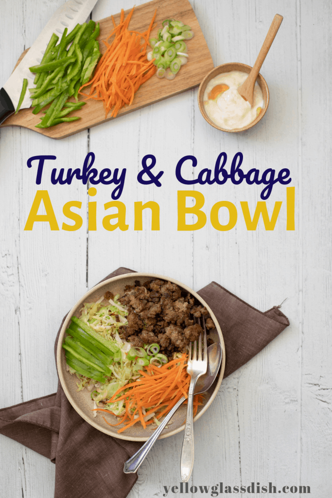 Turkey Cabbage Asian Bowl