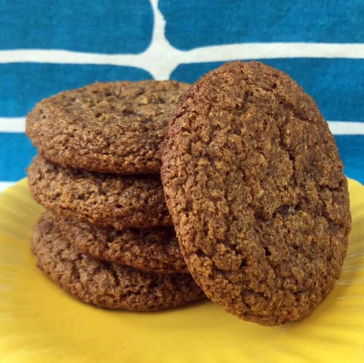 Chewy Molasses Cookies [Low Carb & Keto]